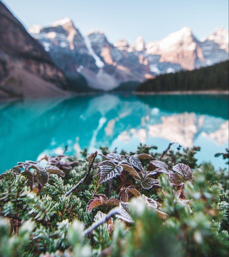 Lago Alberta