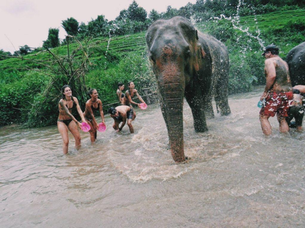 bagno con gli elefanti